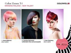 Color Zoom 2014 Finlandiya Finalistleri