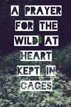 A prayer for the wild at heart kept in cages