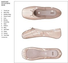The anatomy of a Pointe Shoe
