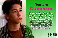 I took Zimbio's '10 Things I Hate About You' quiz and I'm Cameron! Who are you?