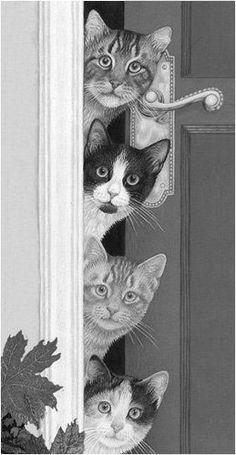 katten in de deur
