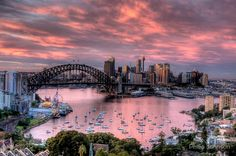 In The Pink - Sydney Harbour