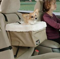 Toyota Venza Dog Accessories – Pet Restraint  - Photo Courtesy of Toyota