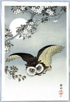 """Flying Owl"" par Ohara Koson"