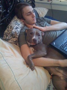 Some love to cuddle. | 37 Pictures That Will Restore Your Faith In Pit Bulls