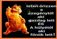Teddy Bear, Funny, Teddy Bears, Funny Parenting, Hilarious, Fun, Humor
