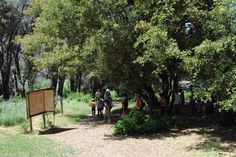 Group nature hike at William Heise County Park. To make camping reservations visit www.sdparks.org.