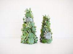 Succulent topiaries by JL Designs.