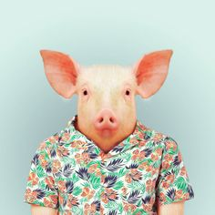 Zoo Portraits is a photoseries by Yago Partal. The pics feature zoo animals dressed in their picture-day best. He's got them all, from a pig in a Hawaiin Zoo Book, Funny Animals, Cute Animals, Wild Animals, Baby Animals, Animal Heads, Photoshop, Pet Clothes, Oeuvre D'art