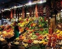 Il 6 luglio a Palazzo Italia la premiazione delle Buone Pratiche di Sviluppo Sostenibile per la Sicurezza Alimentare: 786 candidature per 5 aree tematiche, 18 vincitori, 5 primi premi tra cui Banco Alimentare