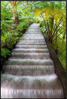 Monte Palace Gardens - Madeira Island