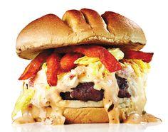 fea_burgers11