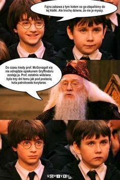 Read from the story Harry Potter Memy by -love-bomb- (♥) with reads. Harry Potter Mems, Harry Potter Anime, Harry Potter Facts, Hahaha Hahaha, Weekend Humor, Funny Mems, Pokemon, 5 W, Drarry