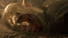 'Game of Thrones' His Golden Crown