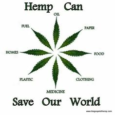 Hemp Can Save Our World. Did you know commercial hemp has many beneficial and practical technologies and uses?