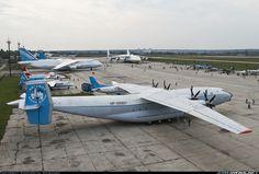 Antonov An-22 Antei aircraft picture