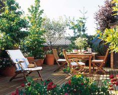 terraza cubierta de distintos tipos de plantas