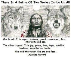 Native American Proverb Native American Wisdom, American Indians, American History, American Spirit, American Women, Native American Proverb, Native American Cherokee, American Symbols, American Literature