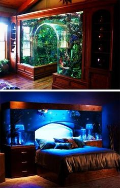 Selecting a fish tank for your home decorating you want to find a functional and energy saving aquarium in a pleasing form