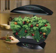 Garden Trends Prediction | AeroGarden Classic 7-Pod with Gourmet Herb Seed...
