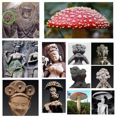 Mushrooms in ancient cultures. Psychedelic Mushrooms & Early Christianity, Connected? - Image Gallery - Photo from mushroomstone.com