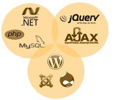 Dxpinfotech Toronto a web development company expert in effective web development services. We furnish you with unique web server configuration.