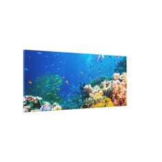 Many thanks to Joanne from Barrack Point, Australia for purchasing this beautiful Coral Sea Wrapped Canvas