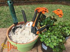 Easy Garden, Garden Ideas, Rust Free, Outdoor Power Equipment, Garden Tools, Outdoor Living, Gardening, Simple, Tips