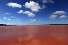 La laguna di Hutt è un lago salato dell'Australia occidentale, situato in prossimità dell'oceano, qualche metro al di sotto del livello del mare. Il colore rosa del lago è provocato dalla massiccia presenza dell'alga Dunaliella salina, fonte di beta carotene.