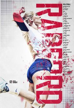 2015 Radford Volleyball Poster