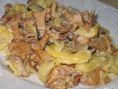 10 рецептов блюд из грибов