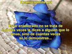 Frases Bonitas De Amor Cortas Y Lindas Para Tu Pareja. Sorprende Con Fra...