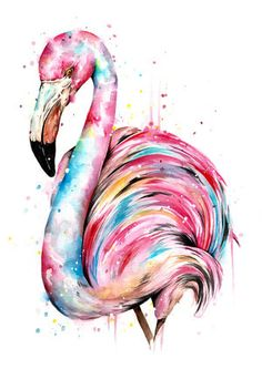 Flamingos are so glorious, and their striking colour is unmissable. This piece is done in a free and playful manner and reflects all of the beautiful colours in it's natural environment. Flamingo Painting, Flamingo Art, Pink Flamingos, Flamingo Pictures, Desenho Pop Art, Flamingo Tattoo, Flamingo Wallpaper, Animal Paintings, Watercolor Paintings