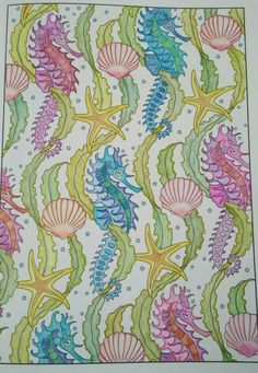 Creative Haven Art Nouveau Animal Designs Colouring Book Seahores Shell