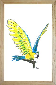 yellow parrot illustration in frame catchii.com design wall art