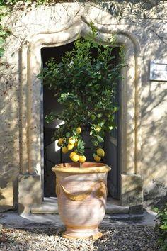 Vase d'Anduze cérusé jaune diamètre 46cm hauteur 55cm - Tek Import : www.tekimport.fr