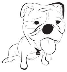 English Bulldog -- Charity Pups raises awareness and dollars for a different animal-related non-profit each month through dog illustrations. www.charitypups.com #dog #illustration #cute #adorable #puppy #bulldog