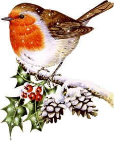 Cute Winter Bird Clip Art | Clip Art Winter Bird Related Keywords & Suggestions - Clip Art Winter ...