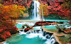 Smooth waterfall, colourful surroundings.