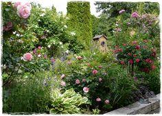 Mein Garten ist ein langsam wachsendes Werk, an dem ich mit Liebe arbeite. Und ich gebe offen zu, dass ich stolz darauf bin. (Claude Monet) Juni-Garten