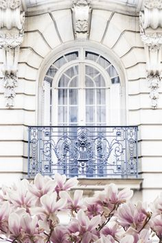 Paris Photography - Magnolia Blossoms under Balcony, Spring in Paris, Architecture Photograph, Travel Fine Art Photograph, Large Wall Art Paris France, Oh Paris, I Love Paris, Paris In May, Pink Paris, Summer In Paris, Paris In December, Montmartre Paris, Belle France