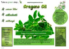 ~Health Benefits Of Oregano Oil~ Holistic Nutrition, Healthy Nutrition, Oregano Oil Benefits, Organic Lifestyle, Essential Oil Uses, Rheumatoid Arthritis, Reduce Inflammation, Natural Healing, Organic Recipes