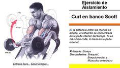 Curl en Banco Scott # Culturismo http://williambodybuilder.com/ http://fuerzamaximawilliam.wordpress.com/