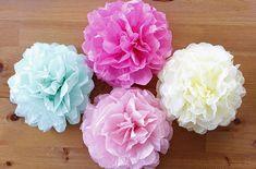 【おうちでパーティー】フワラーポムで華やかデコに挑戦してみよう!! - ライブドアニュース Rose, Flowers, Child, Paper Flowers, Pink, Boys, Kid, Children, Roses