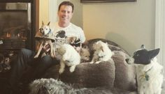 This Guy Just Can't Stop Adopting Senior Dogs And Farm Animals For the love of animals. Pass it on.
