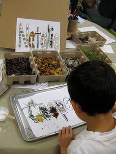 Our Reggio Emilia-Inspired Classroom Transformation: Natural Materials