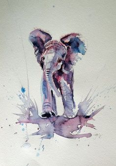 ARTFINDER: Elephant baby by Kovács Anna Brigitta - Original watercolour painting on high quality watercolour paper. I love landscapes, still life, nature and wildlife, lights and shadows, colorful sight. Thes...