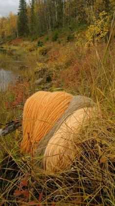 Luonnonvärit siirtyvät lankoihin.