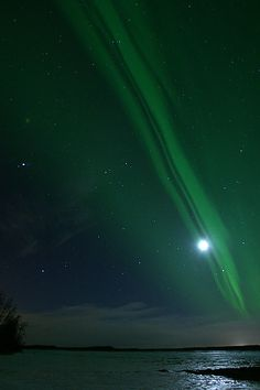 Northern Lights ~ Alaska Sky.   This is at the top of my bucket list to visit! Next to Ireland of course. :)