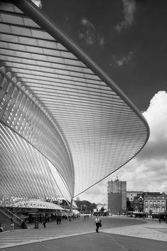 Santiago Calatrava, Mario Ferrara · Liège-Guillemins Station · Divisare
